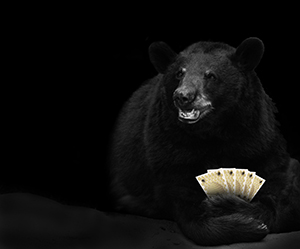 Poker Playing Bear